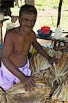 Market stall holder selling dried fish, Nilaveli, Trincomalee, Sri Lanka, Asia Stock Photo - Premium Rights-Managed, Artist: Robert Harding Images, Code: 841-06344393