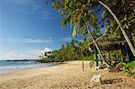 View of the unspoilt beach at Palm Paradise Cabanas, Tangalle, South coast, Sri Lanka, Asia Stock Photo - Premium Rights-Managed, Artist: Robert Harding Images, Code: 841-06344465