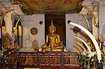 Temple of the Tooth Relic, famous temple housing tooth relic of the Buddha, UNESCO World Heritage Site, Kandy, Sri Lanka, Asia Stock Photo - Premium Rights-Managed, Artist: Robert Harding Images, Code: 841-06344480