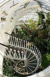 Spiral staircase in the Temperate House, Royal Botanic Gardens, Kew, UNESCO World Heritage Site, London, England, United Kingdom, Europe Stock Photo - Premium Rights-Managed, Artist: Robert Harding Images, Code: 841-06344519