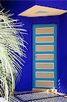 Majorelle Gardens, Marrakesh, Morocco, North Africa, Africa Stock Photo - Premium Rights-Managed, Artist: Robert Harding Images, Code: 841-06344798