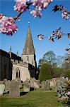 Baslow Parish Church and spring cherry blossom, Derbyshire, England, United Kingdom, Europe Stock Photo - Premium Rights-Managed, Artist: Robert Harding Images, Code: 841-06344841