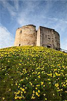 Cliffords Tower, York, Yorkshire, England Stock Photo - Premium Rights-Managednull, Code: 841-06344974