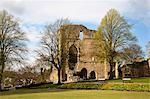 Knaresborough Castle Grounds, Knaresborough, North Yorkshire, England Stock Photo - Premium Rights-Managed, Artist: Robert Harding Images, Code: 841-06344987