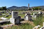 Ireon archaeological site with columns of the Temple of Hera, Ireon, Samos, Aegean Islands, Greece Stock Photo - Premium Rights-Managed, Artist: Robert Harding Images, Code: 841-06345206