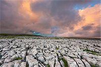 Twistleton Scar Limestone Pavement, Ingleton, Yorkshire Dales, Yorkshire, England, United Kingdom, Europe Stock Photo - Premium Rights-Managednull, Code: 841-06345327