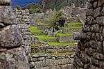 Inca wall, Machu Picchu, peru, peruvian, south america, south american, latin america, latin american South America. The lost city of the Inca was rediscovered by Hiram Bingham in 1911 Stock Photo - Premium Rights-Managed, Artist: Robert Harding Images, Code: 841-06345389