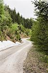 Gravel road in rural forest Stock Photo - Premium Royalty-Free, Artist: Peter Christopher, Code: 649-06352787