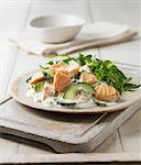 Plate of poached salmon with salad Stock Photo - Premium Royalty-Free, Artist: Blend Images, Code: 649-06352862