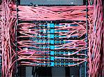 Close up of cables in server room Stock Photo - Premium Royalty-Free, Artist: Ikon Images, Code: 649-06353080