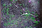 Fingerprint on screen in forensic lab Stock Photo - Premium Royalty-Free, Artist: ableimages, Code: 649-06353095