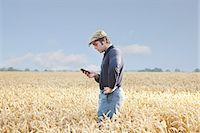 farm phone - Farmer using cell phone in crop field Stock Photo - Premium Royalty-Freenull, Code: 649-06353299