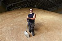 Farmer standing in shed of grain Stock Photo - Premium Royalty-Freenull, Code: 649-06353313