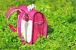 School Bag with Cherry Blossom Stock Photo - Premium Rights-Managed, Artist: Aflo Relax, Code: 859-06354487