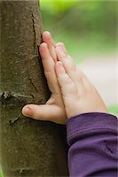 Toddler's hands touching tree trunk, cropped Stock Photo - Premium Royalty-Freenull, Code: 633-06354656