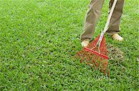Person raking lawn, low section Stock Photo - Premium Royalty-Freenull, Code: 633-06354761