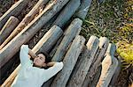 Young man lying on pile of logs, eyes closed Stock Photo - Premium Royalty-Free, Artist: Robert Harding Images, Code: 633-06354821