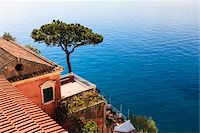 Tree and House on Coast of Mediterranean Sea, Positano, Campania, Italy Stock Photo - Premium Rights-Managednull, Code: 700-06355341