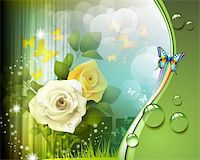 Background with roses and butterflies Stock Photo - Royalty-Freenull, Code: 400-06355864