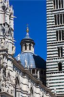 Close-Up of Siena Cathedral, Siena, Tuscany, Italy Stock Photo - Premium Rights-Managednull, Code: 700-06367756