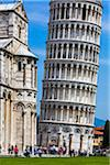 Leaning Tower of Pisa, Tuscany, Italy Stock Photo - Premium Rights-Managed, Artist: R. Ian Lloyd, Code: 700-06367814