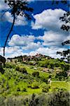 Panzano in Chianti, Chianti, Tuscany, Italy Stock Photo - Premium Rights-Managed, Artist: R. Ian Lloyd, Code: 700-06367851