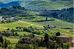 Panzano in Chianti, Chianti, Tuscany, Italy Stock Photo - Premium Rights-Managed, Artist: R. Ian Lloyd, Code: 700-06367855