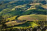Farmland, Radda in Chianti, Tuscany, Italy Stock Photo - Premium Rights-Managed, Artist: R. Ian Lloyd, Code: 700-06367879