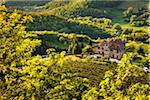 Farmhouse, Radda in Chianti, Tuscany, Italy Stock Photo - Premium Rights-Managed, Artist: R. Ian Lloyd, Code: 700-06367882