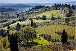 Overview of Countryside Surrounding San Gimignano, Siena Province, Tuscany, Italy Stock Photo - Premium Rights-Managed, Artist: R. Ian Lloyd, Code: 700-06367910