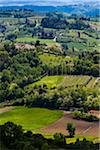 Overview of Farmland, San Miniato, Province of Pisa, Tuscany, Italy Stock Photo - Premium Rights-Managed, Artist: R. Ian Lloyd, Code: 700-06367966