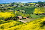 Farmhouse and Vineyard, Montalcino, Val d'Orcia, Province of Siena, Tuscany, Italy Stock Photo - Premium Rights-Managed, Artist: R. Ian Lloyd, Code: 700-06368034
