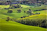 San Quirico d'Orcia, Siena, Tuscany, Italy Stock Photo - Premium Rights-Managed, Artist: R. Ian Lloyd, Code: 700-06368045