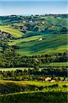 Overview of Valley, Monticchiello, Val d'Orcia, Province of Siena, Tuscany, Italy Stock Photo - Premium Rights-Managed, Artist: R. Ian Lloyd, Code: 700-06368144