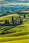Winding Road, Monticchiello, Val d'Orcia, Province of Siena, Tuscany, Italy Stock Photo - Premium Rights-Managed, Artist: R. Ian Lloyd, Code: 700-06368146