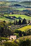 Barberino Val d'Elsa, Province of Florence, Tuscany, Italy Stock Photo - Premium Rights-Managed, Artist: R. Ian Lloyd, Code: 700-06368153