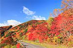 Red foliage in Fukushima Prefecture Stock Photo - Premium Royalty-Free, Artist: Raimund Linke, Code: 622-06370522