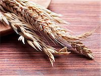 Various ears of grain on a wooden surface Stock Photo - Premium Royalty-Freenull, Code: 659-06373133