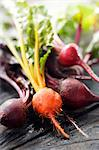 Fresh Red and Golden Beets Stock Photo - Premium Royalty-Free, Artist: Kablonk! RM, Code: 659-06373152