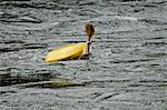 Person flipping in river water while kayaking Stock Photo - Premium Royalty-Free, Artist: Cultura RM, Code: 698-06374752