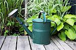 Watering can on wooden plank with plants in background Stock Photo - Premium Royalty-Free, Artist: Aflo Relax, Code: 698-06374866
