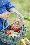 Midsection of a young woman carrying fresh produce in basket Stock Photo - Premium Royalty-Free, Artist: Blend Images, Code: 698-06374938
