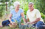 Senior couple sitting with baskets in vegetable garden Stock Photo - Premium Royalty-Free, Artist: Aflo Relax, Code: 698-06374944