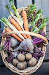 High angle view of harvested vegetables in basket Stock Photo - Premium Royalty-Free, Artist: Cultura RM, Code: 698-06374968