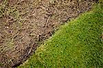 Grass turf and soil in formal garden Stock Photo - Premium Royalty-Free, Artist: Blend Images, Code: 698-06375484