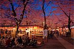 Hanami In Kyoto, Japan Stock Photo - Premium Rights-Managed, Artist: Aflo Relax, Code: 859-06380101
