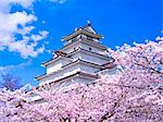 Tsuruga Castle, Fukushima Prefecture, Japan Stock Photo - Premium Rights-Managed, Artist: Aflo Relax, Code: 859-06380125