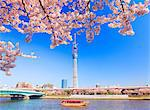 Tokyo Sky Tree, Tokyo, Japan Stock Photo - Premium Rights-Managed, Artist: Aflo Relax, Code: 859-06380188