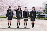 Cherry Blossoms And High School Girls Stock Photo - Premium Rights-Managed, Artist: Aflo Relax, Code: 859-06380212