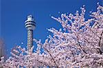Marine Tower, Yokohama, Kanagawa Prefecture Stock Photo - Premium Rights-Managed, Artist: Aflo Relax, Code: 859-06380290